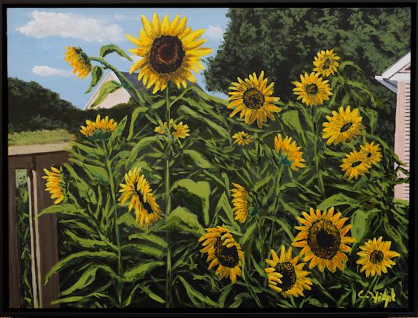 Sunflowers In Garden Original