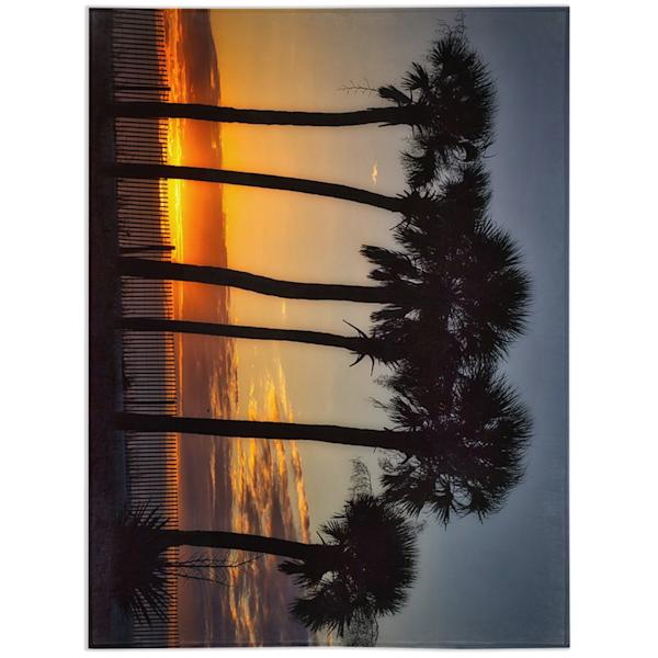 Palm Blanket   Willard R Smith Photography