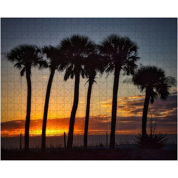 Palm Puzzle | Willard R Smith Photography