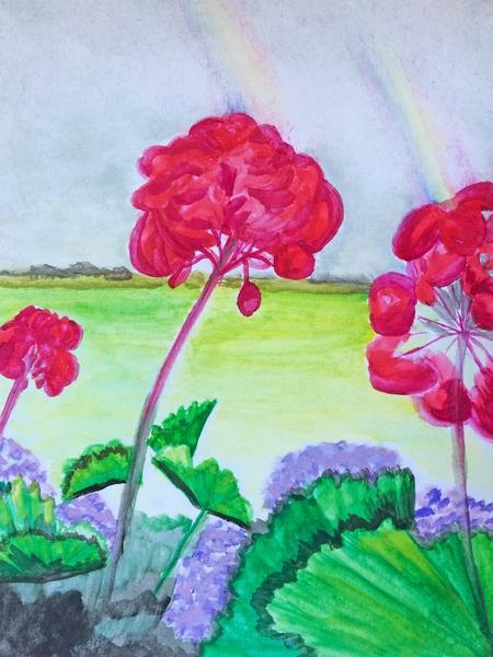 Red Geraniums overlooking a green pasture fine art prints