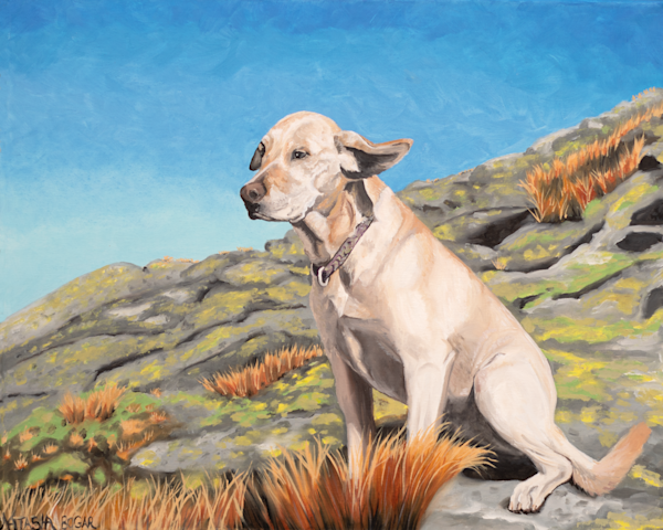'Mountain Dog' Art for Sale