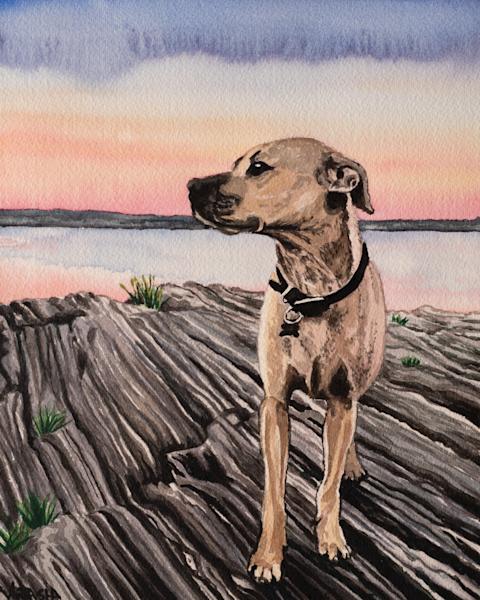'Coastal Dog' Art for Sale
