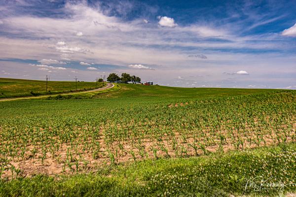 Nebraska Farm Art | Cutlass Bay Productions, LLC