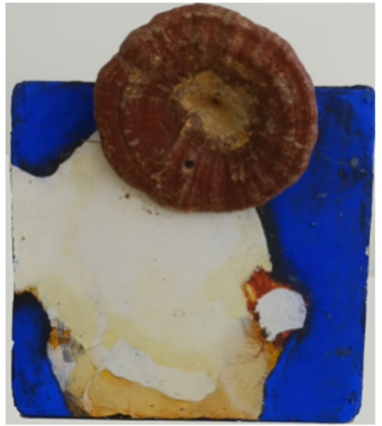 Blue Sea Nugget Ii Art | East End Arts