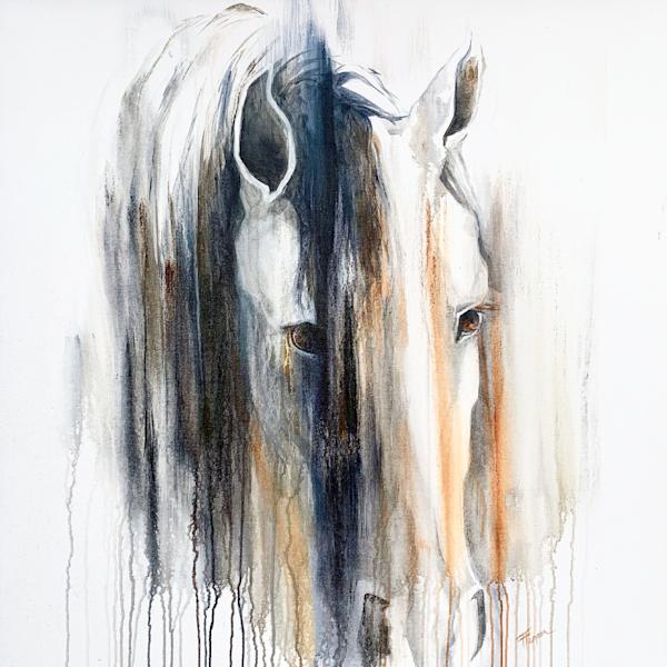 Curiousity Art | Equine Instincts Studio