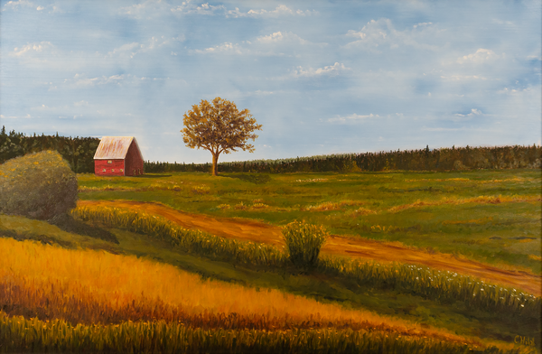 Red Barn In Meadow Print