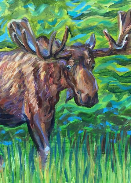 Bull Moose Alaska greenbelt art print by Amanda Faith Thompson