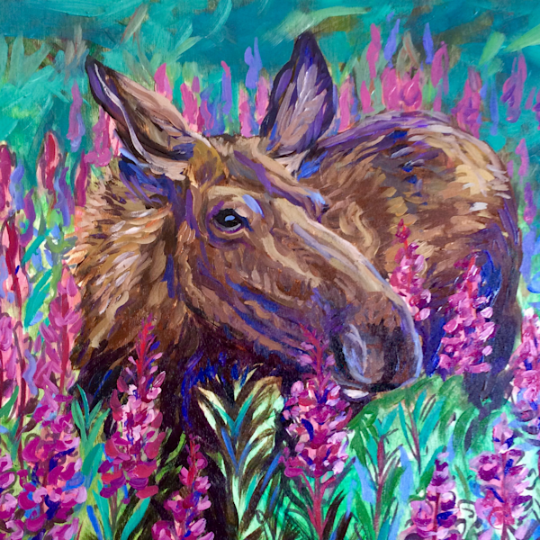 Moose and Fireweed Alaska Wildlife Art Print by Amanda Faith Thompson