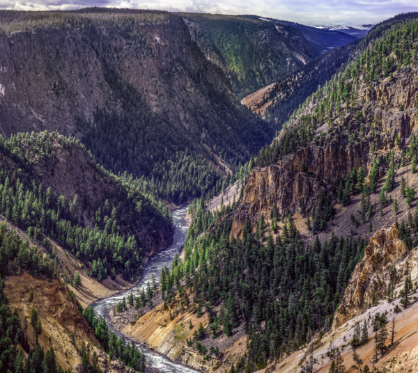 The Grand Canyon Of Yellowstone Photography Art | Robert Vielee Photography