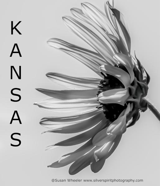 Kansas  Merch Photography Art   Silver Spirit Photography