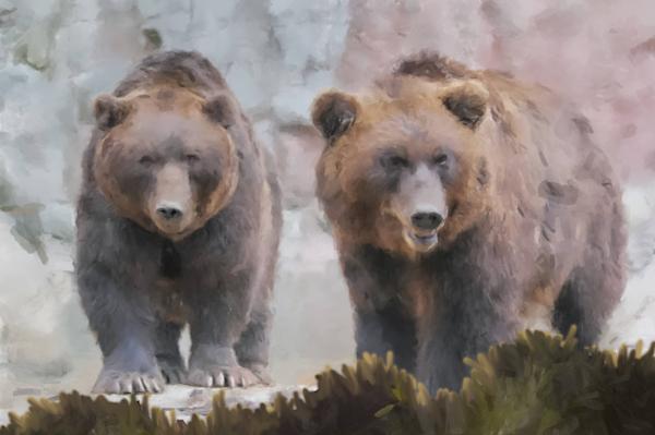 2 Brown Bears Art   Windhorse
