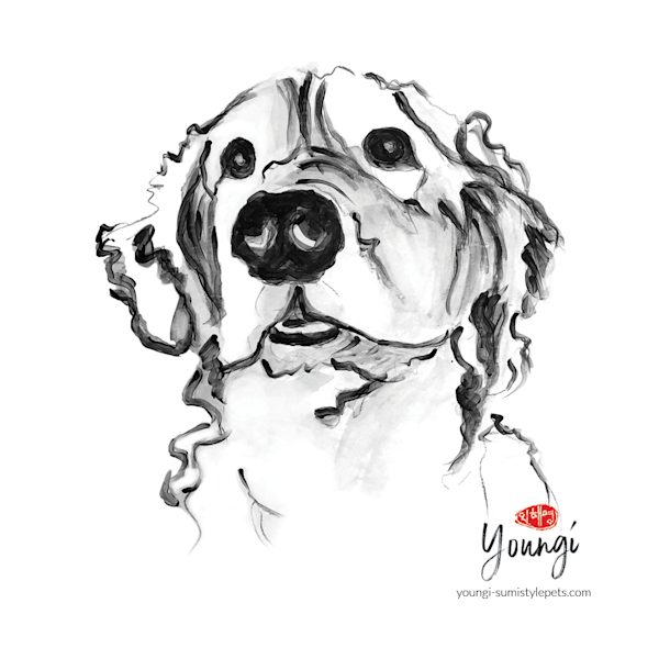Bing: Golden (Stickers) Art | Youngi-Sumistyle pets