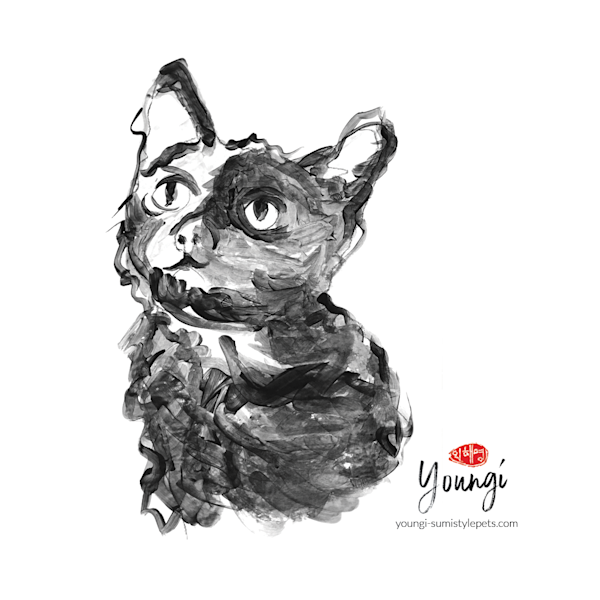 Lucy: Black Cat (Sticker) Art   Youngi-Sumistyle pets
