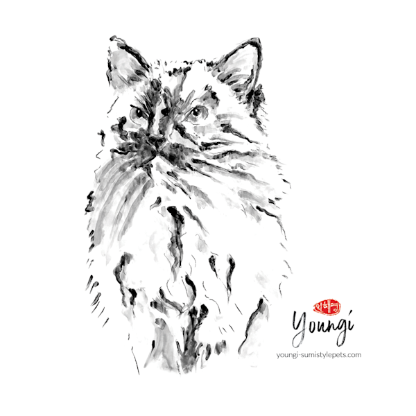 Lucy: Ragdoll Cat (Sticker) Art   Youngi-Sumistyle pets