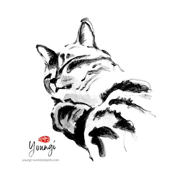 Fi 2: Domestic Shorthair Cat (Sticker) Art   Youngi-Sumistyle pets