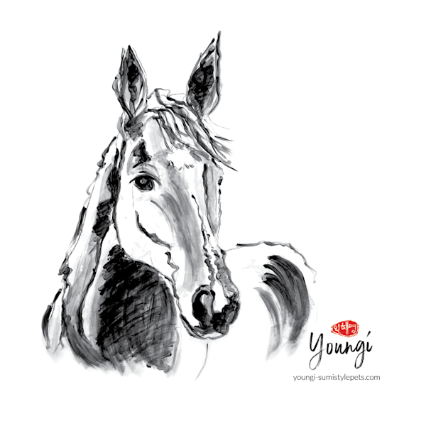 Lolly: Thoroughbred (Stickers) Art   Youngi-Sumistyle pets