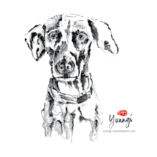 L Inus: Lab Mix Art   Youngi-Sumistyle pets