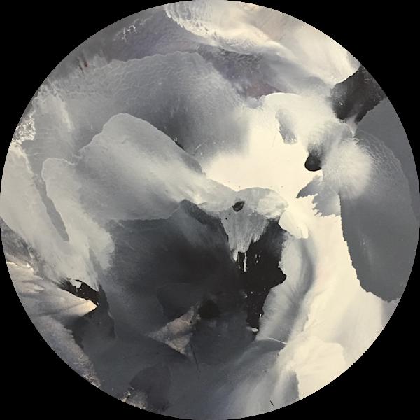 Alyssum 01 Art | Usha Shukla Art
