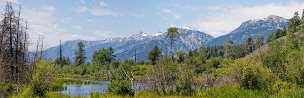 Tetons In The Distance, Panoramic View  Photography Art   Alina Marin-Bliach Photography/alinabstudios LLC