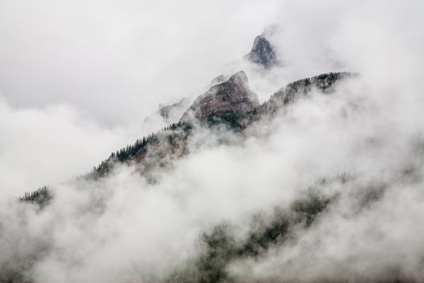 Foggy Spirit  Photography Art | Alina Marin-Bliach Photography/alinabstudios LLC