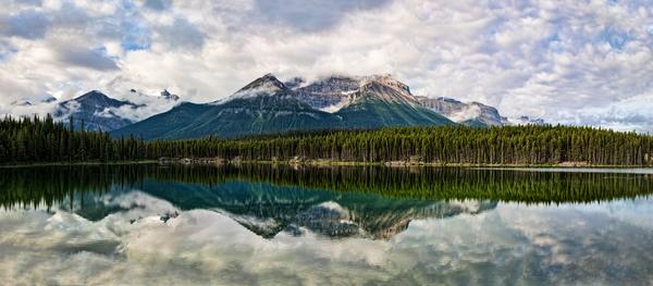 Reflection On The Lake  Photography Art | Alina Marin-Bliach Photography/alinabstudios LLC