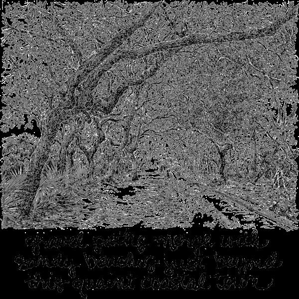 Cerulean Park Art | bharris Art, LLC