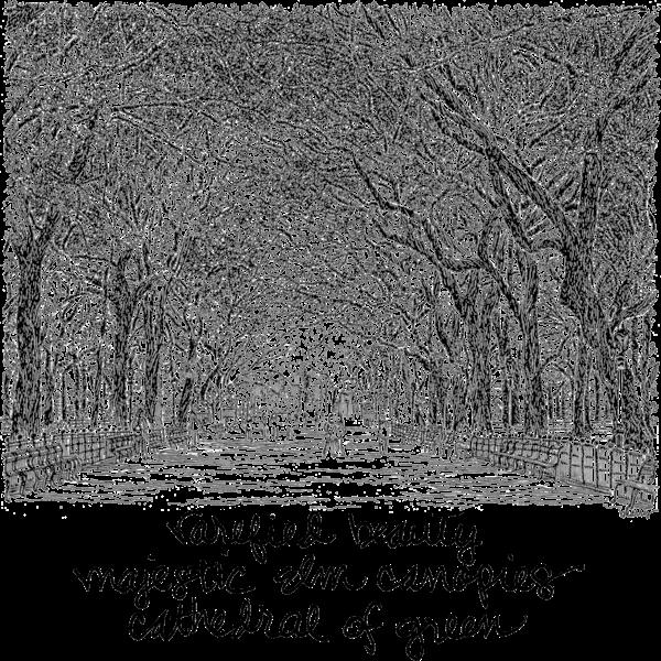 Central Park Mall Art | bharris Art, LLC