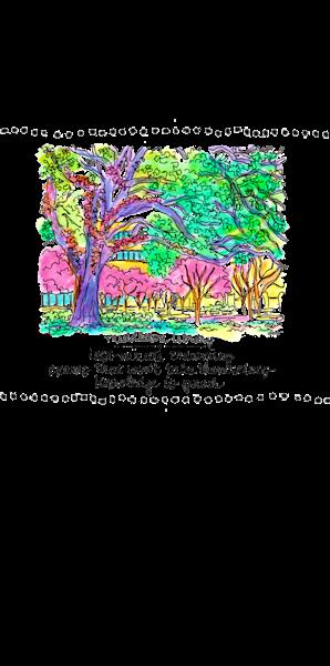 Middleton Library Art   bharris Art, LLC
