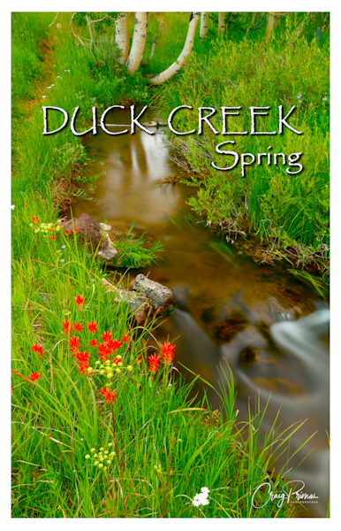 Duck Creek Spring Poster Photography Art | Craig Primas Photography