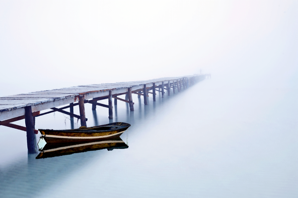 Tranquility And Morning Fog Photography Art | Images by Louis Cantillo