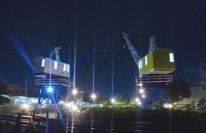 Shining Cranes at Night, Night Photo Wall Art by Nature photographer Melissa Fague