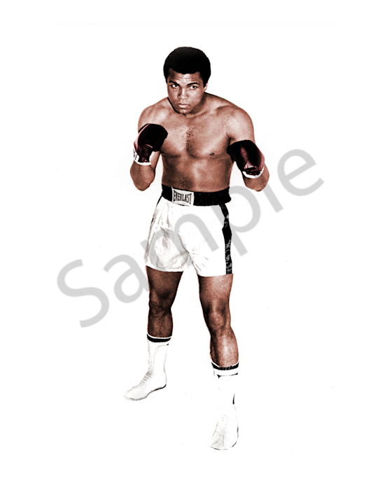 Muhammad Ali in a boxing pose
