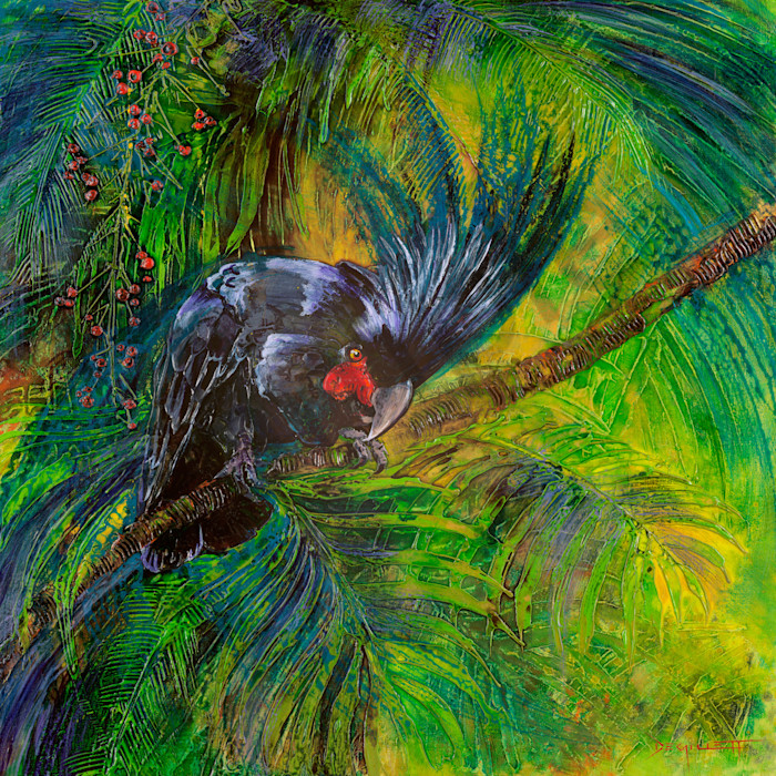 Palm Cockatoo by De Gillett