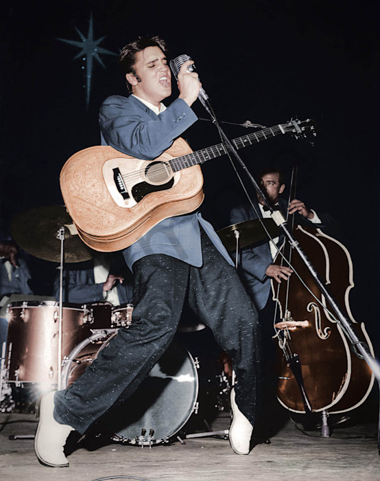 Elvis Presley live in concert