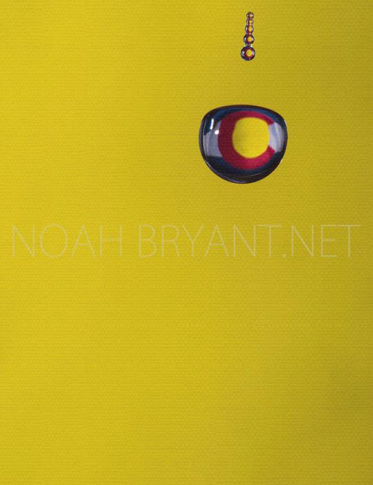 Colorado Flag - Noah Bryant