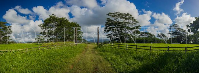 Hawaiian Farm - Noah Bryant
