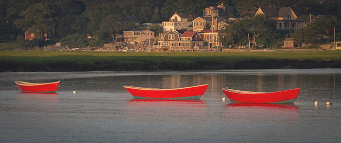 Red Dories