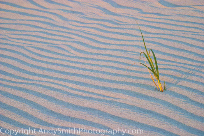 waves in the sand fine art photograph