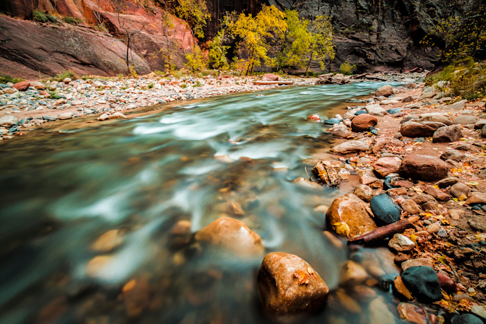 AUTUMN COLORS IN NARROWS