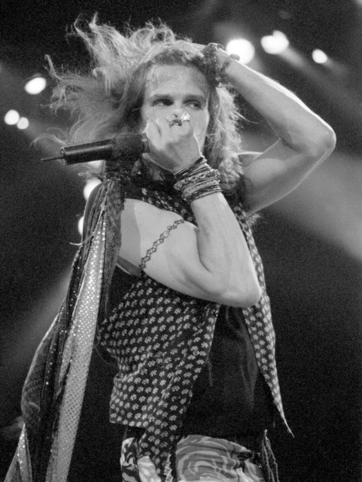 Steven Tyler, Aerosmith, On Stage No. 2 Limited Edition Print