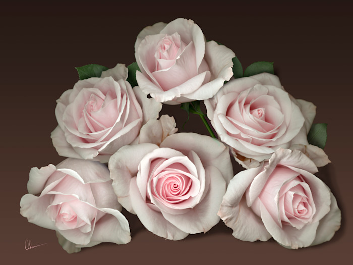 Pink Rose Pyramid on a Brown Background