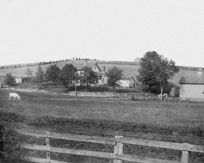 Chatterton Farm