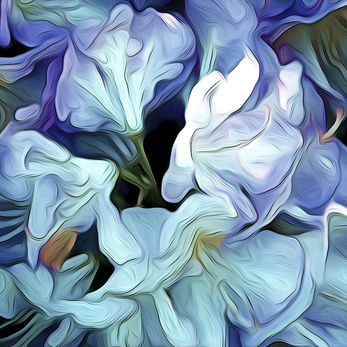 Rhododendron Floral wall art by Arthur Jacob