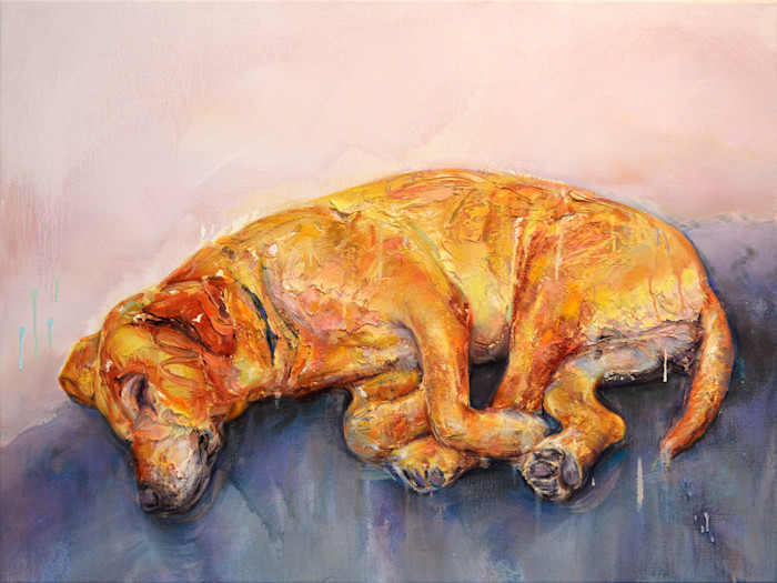 Sleeping dog painting