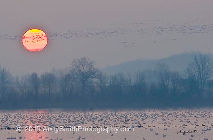 Sunrise at Middle Creek Wildlife Management Area, fine art photograph