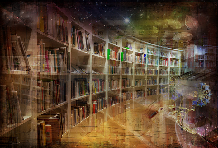 Library Nights | Nicky Jameson