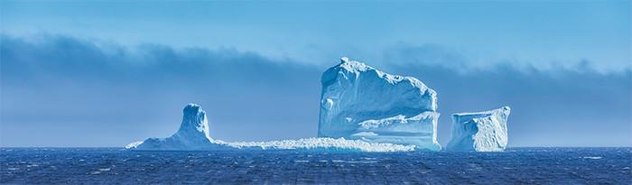 Ferryland Beast - Iceberg