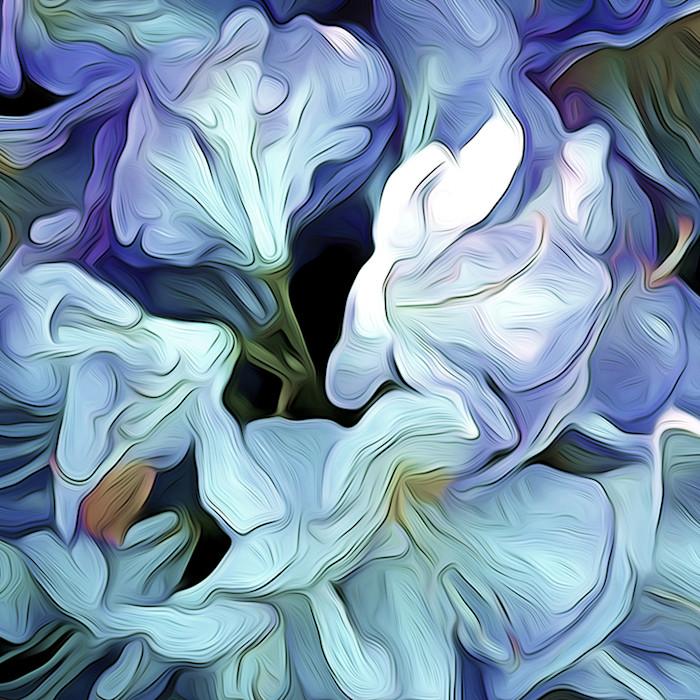 Rhododendrum_blossom_oxytk2