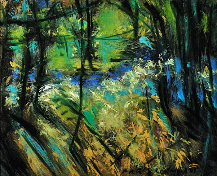 Presecan_small_creek_the_joy_of_nature_ilgj95