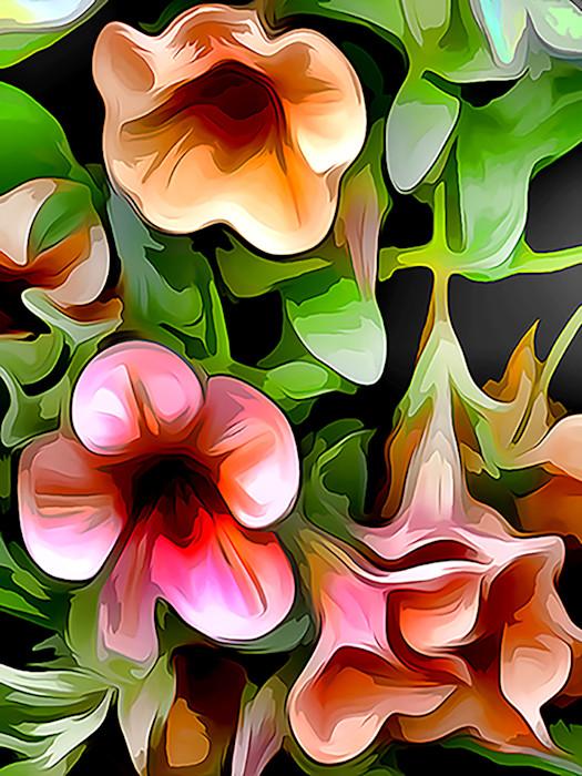 Hanging_basket_blooms_re8bsl